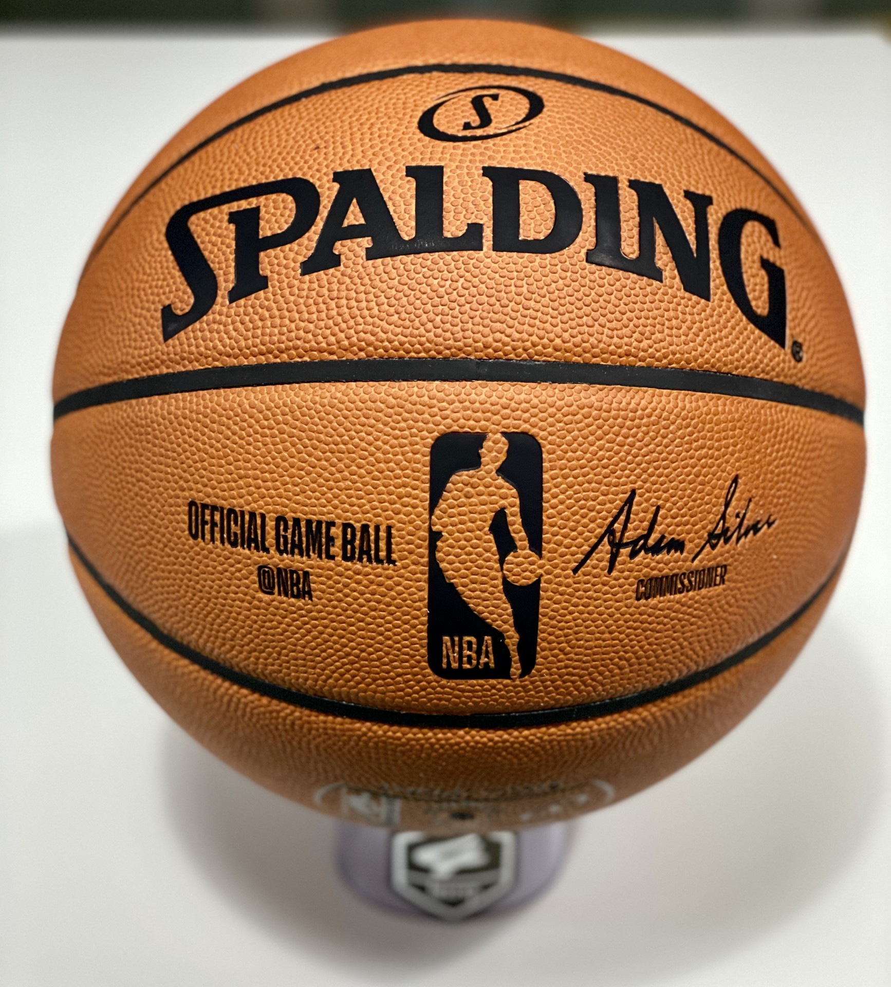 Spalding NBA Game Ball