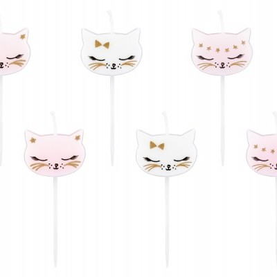 6 velas Gato