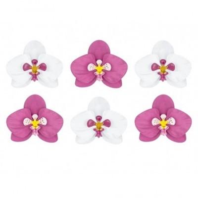 Flores tropicais x6