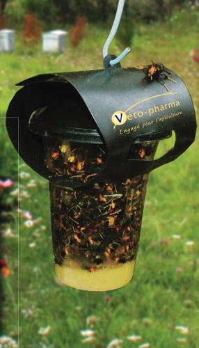 Armadilha para Vespas Kit 1 unidade + Atractivo 10ml