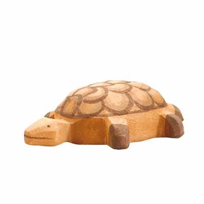 Tartaruga Bebé - Ostheimer