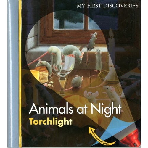Animais à Noite - My First Discoveries