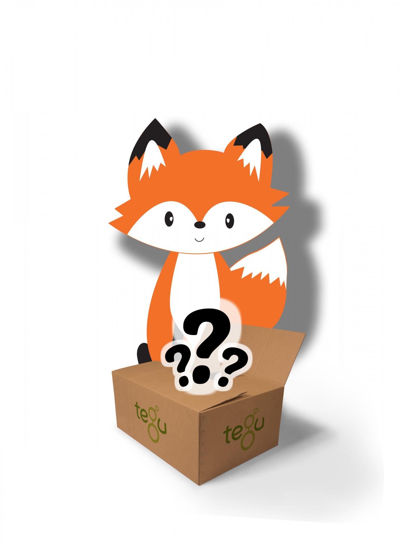 Tegu Mystery Box