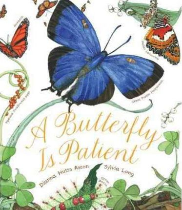 Butterfly is Patient - Capa Mole