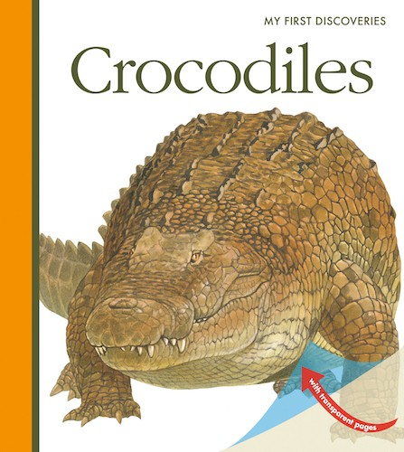 Crocodilos - My First Discoveries