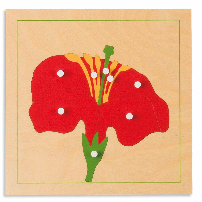 Puzzle Botânica: Flor - Nienhuis Montessori