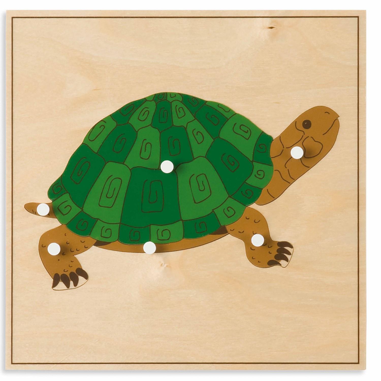 Puzzle Zoologia: Tartaruga - Nienhuis Montessori