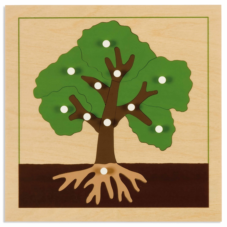 Puzzle Botânica: Árvore - Nienhuis Montessori