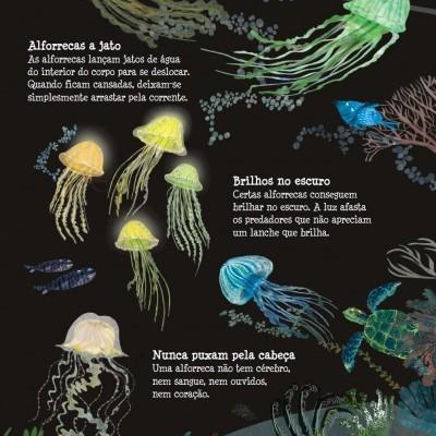 O Grande Livro dos Oceanos