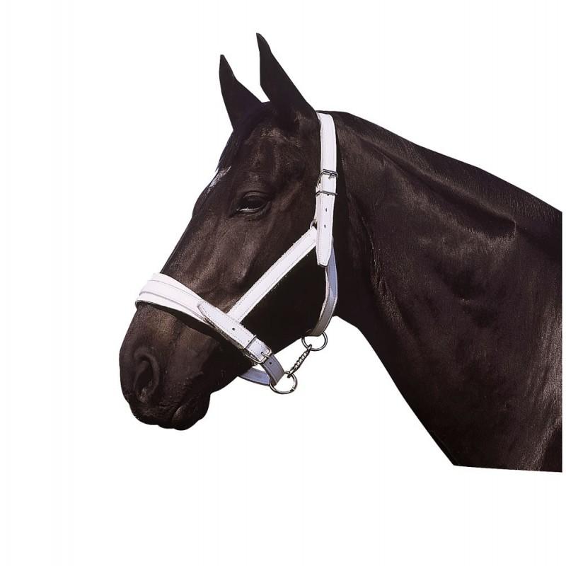 Cabeção para Cavalos de Tiro NORTON CLUB