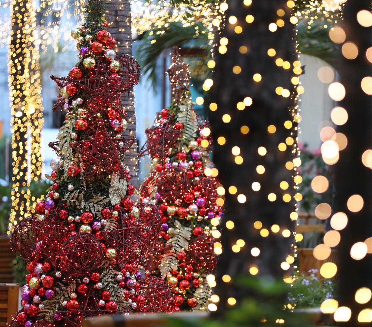 Decorar o Jardim no Natal