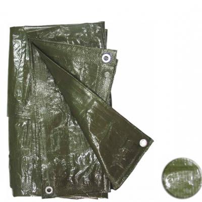 Resguardo Impermeável Verde (4x6m)