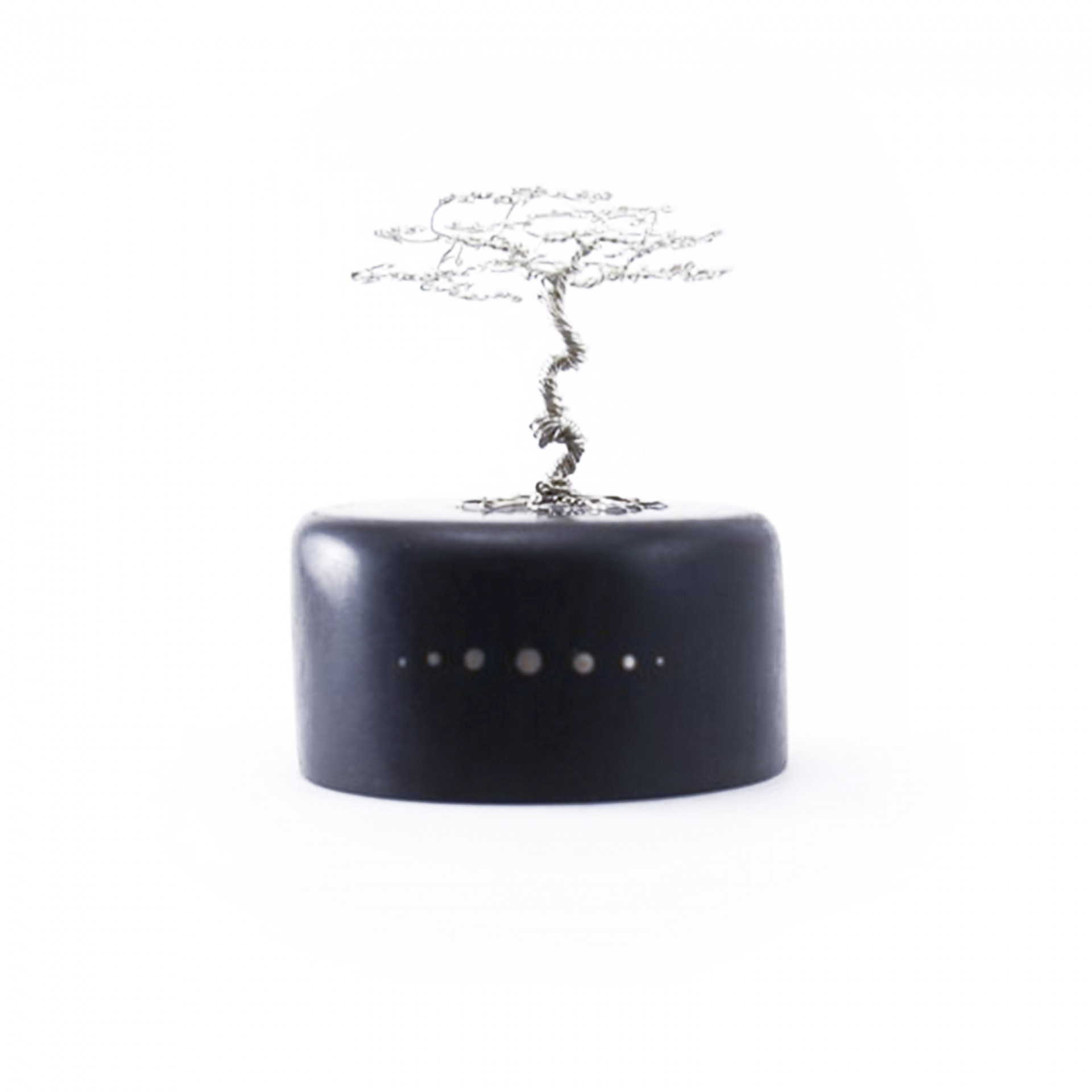 Silver Bonsai Tree on Black Ebony