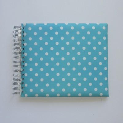 Blue with white dots (The baby's notebook)