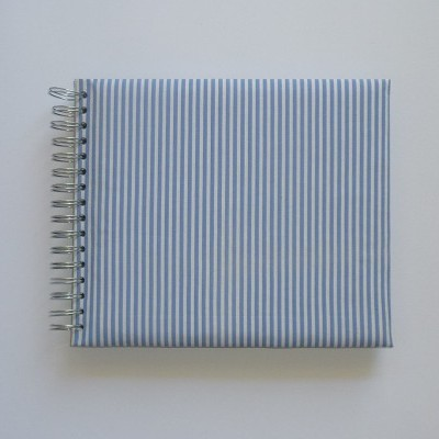 Blue and white stripes (The baby's notebook)