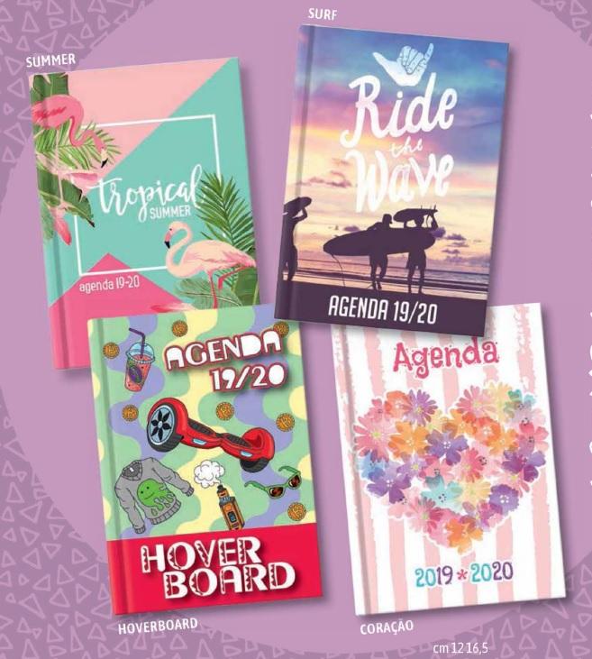 Agenda Escolar 120x165 Papiro Summer / Surf / Hoverboard / Coração - Diária