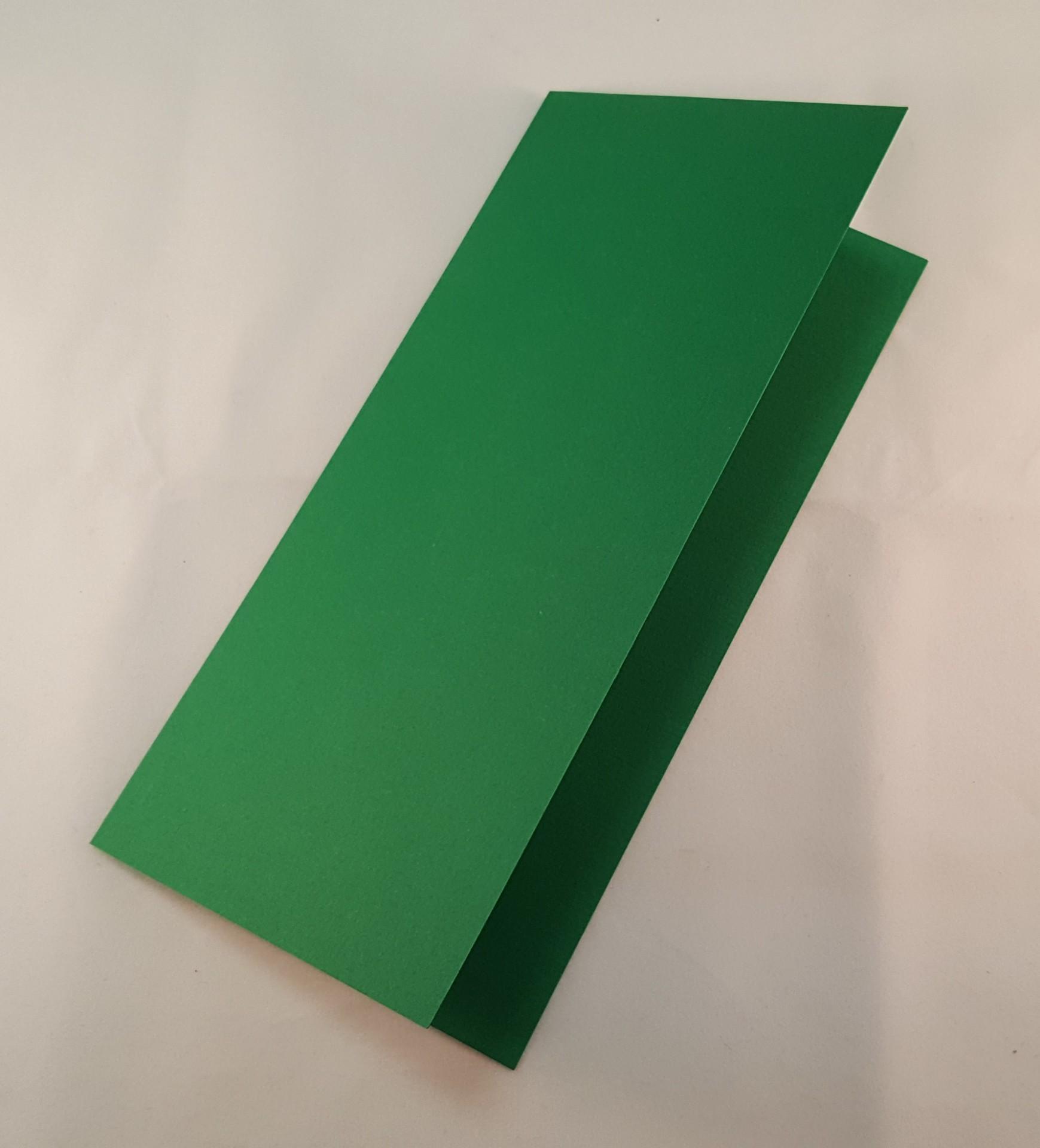 Cartão DL colorido cor verde escuro