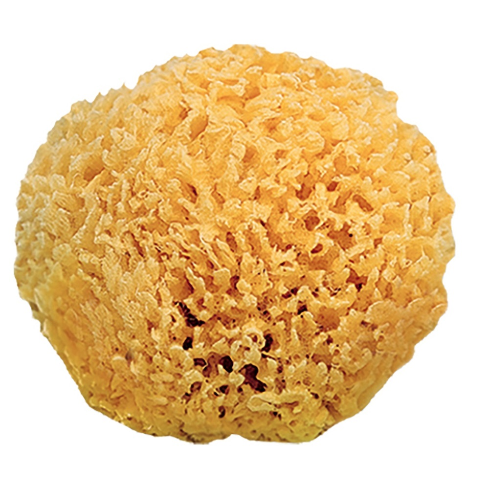 Esponja natural Saro Natural Sponge