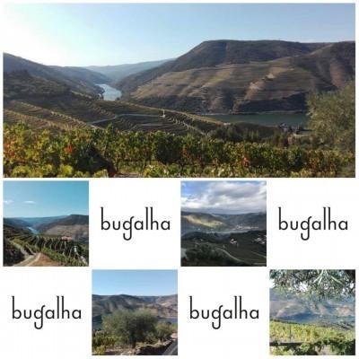 Bugalha  -  DOC Douro