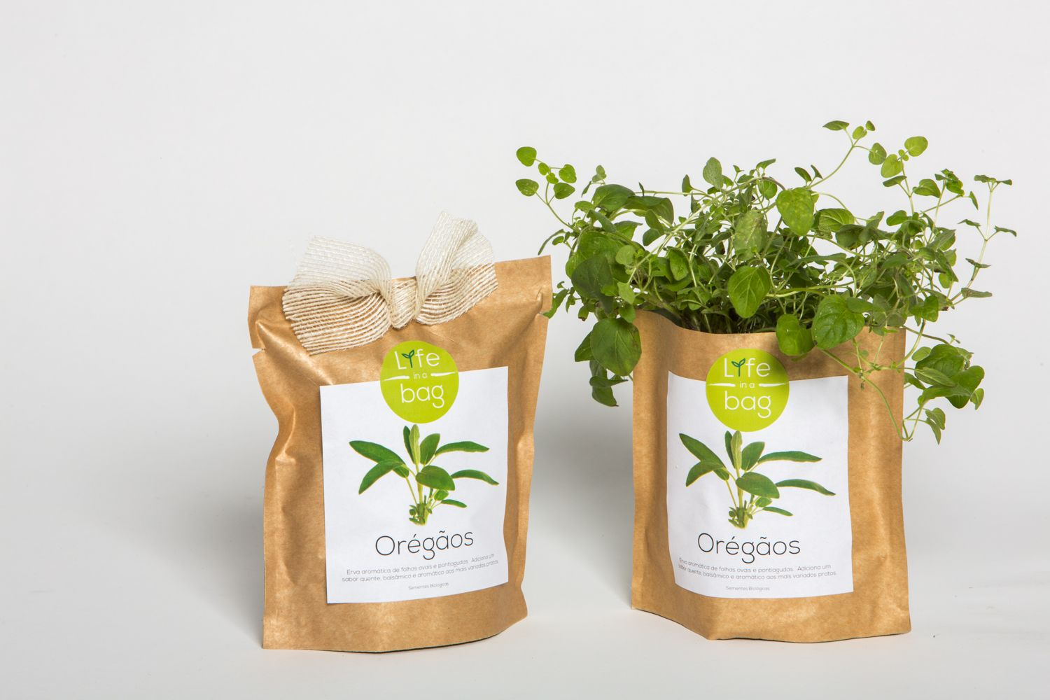 Grow Bag Oregãos