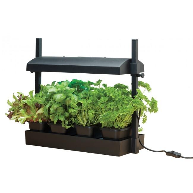 Sistema de Cultivo MICRO GROW LIGHT