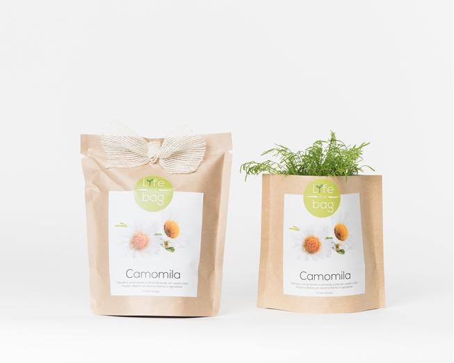 Grow Bag Camomila