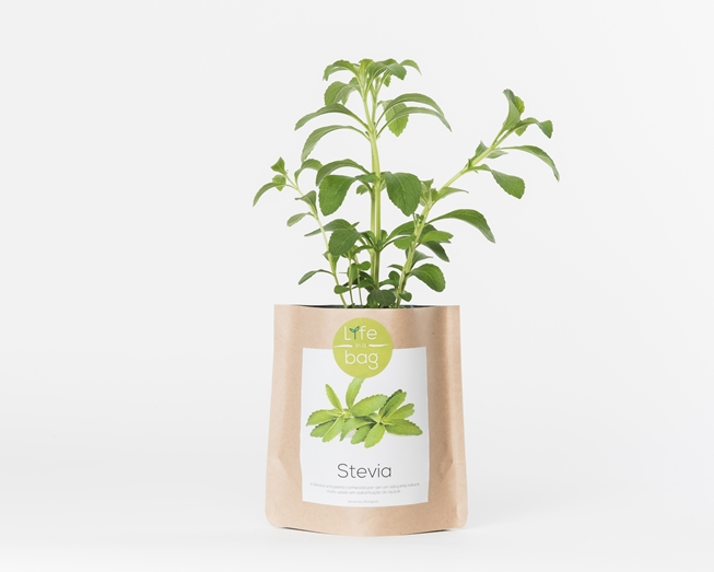 Grow Bag Stevia