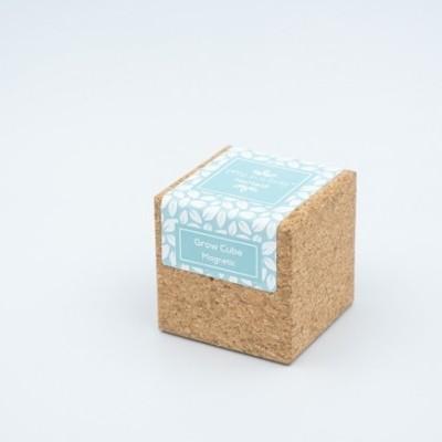 Grow Cube Hortelã