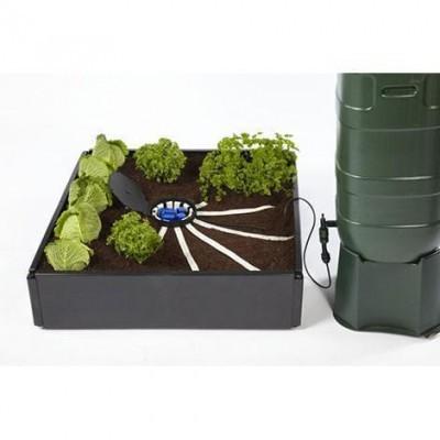 Aqua box Aranha