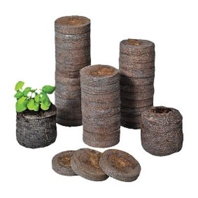 Jiffys para germinação e clones