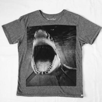 T-SHIRT SHARK ECO