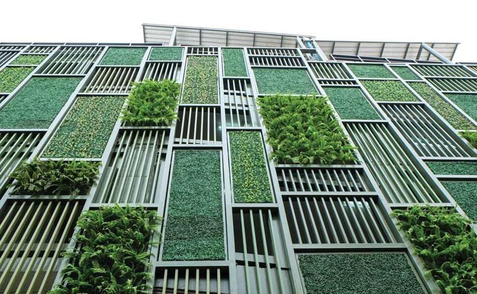 Jardines verticales: combinación perfecta de agricultura pasada y futura