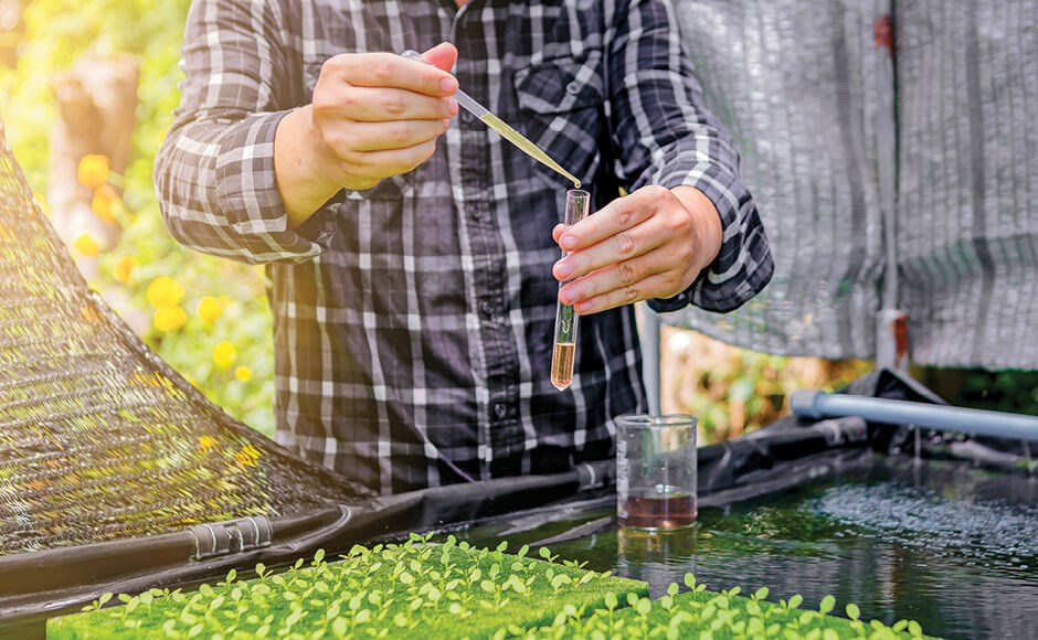 Pruebas de laboratorio en hidroponía
