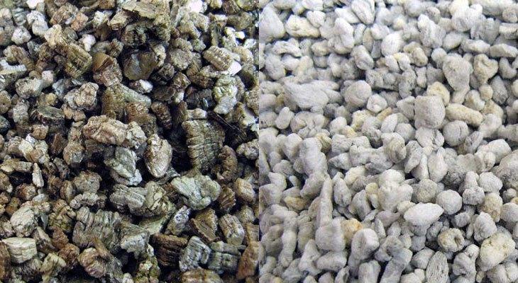 c1410316cd8a Perlita vs vermiculita  cuál es la diferencia