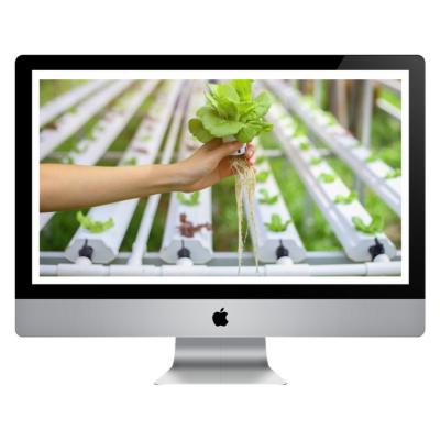 Curso Online - Solución Nutritiva