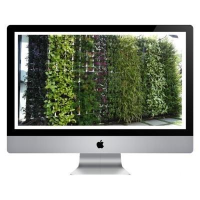 Curso Online - Jardines Verticales