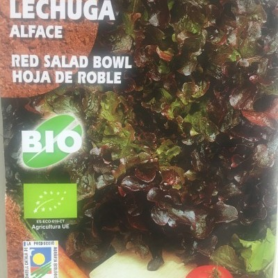 Lechuga Red Salad Bowl