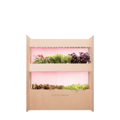 Mini Wall Vertical Farm 34