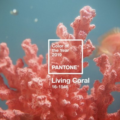 Living Coral 16-1546
