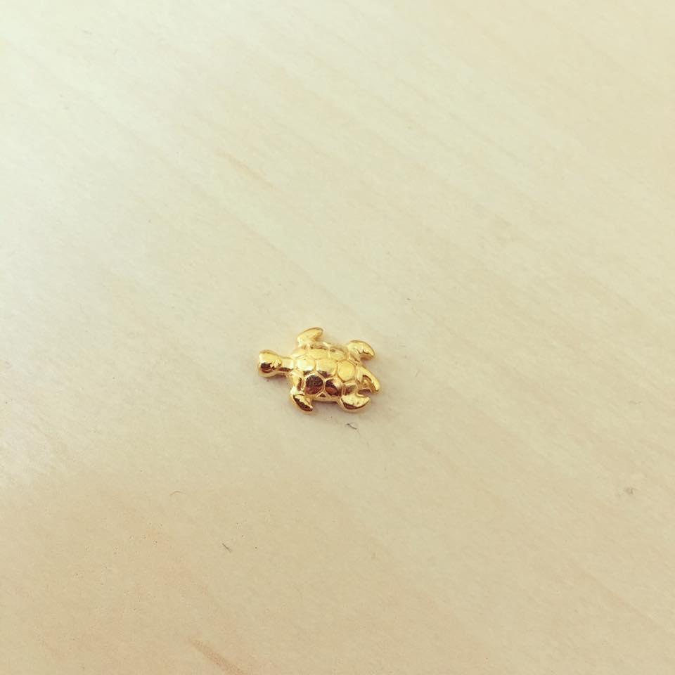 Conta Tartaruga Dourada