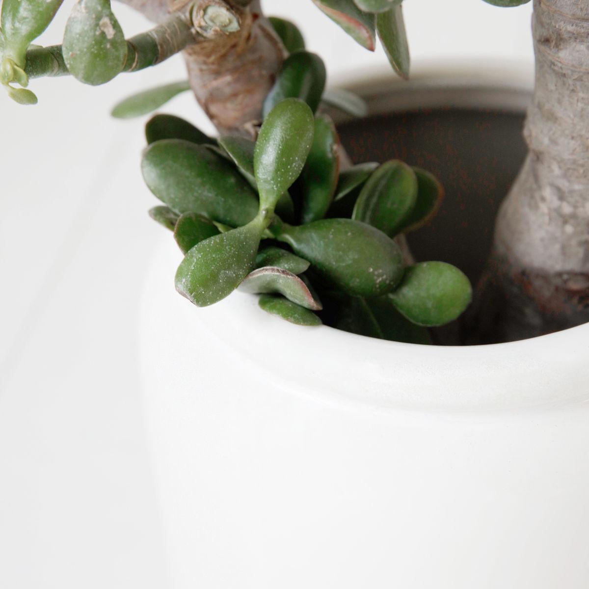 Vaso Just, cerâmica grés, branco