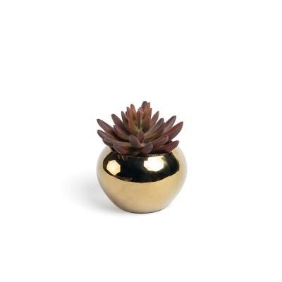 Sedum artificial, c/vaso cerâmica, Ø10x12 cm