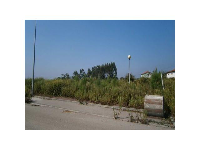 Terreno para Construção na Urb. Quinta Nova - São Pedro Alva