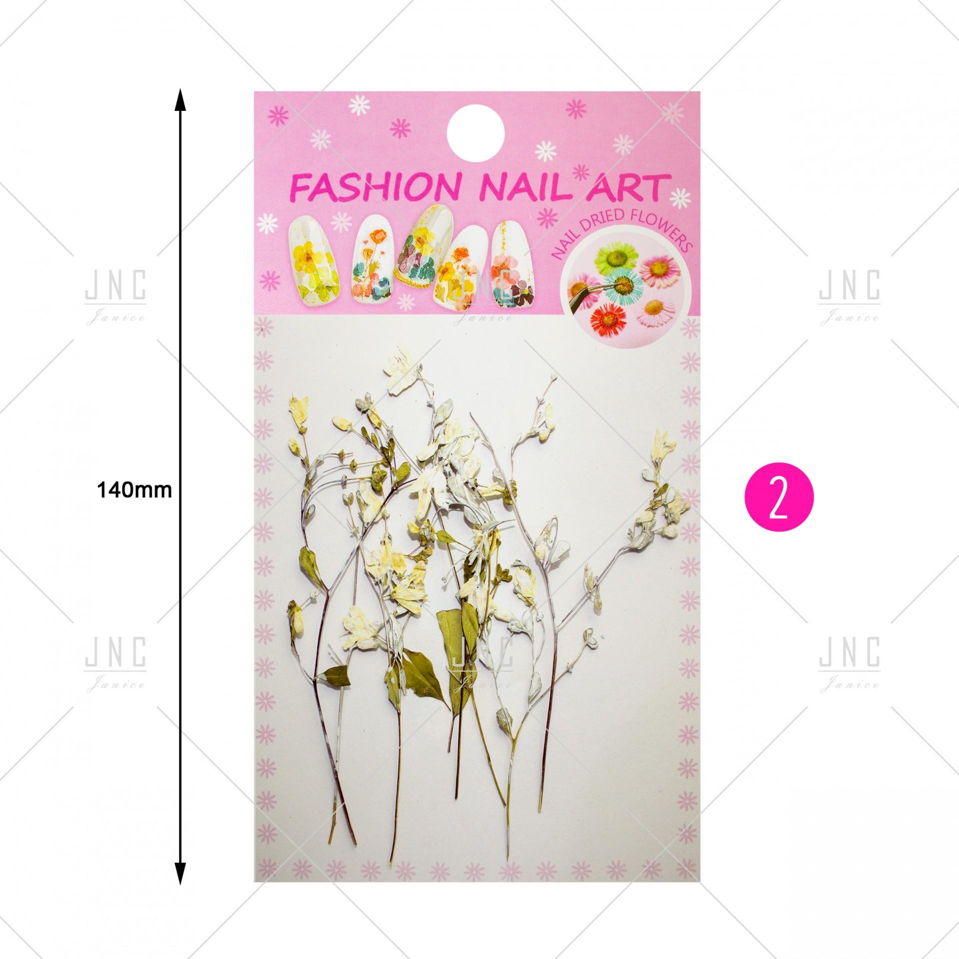 Flores Secas para Nail Art | Ref.861922
