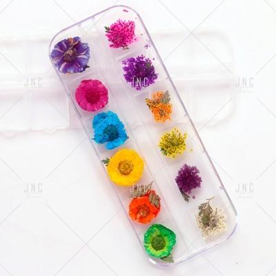 Flores Secas para Nail Art | Ref.862101