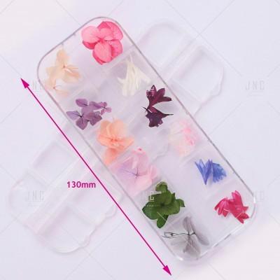Flores Secas para Nail Art | Ref.862098