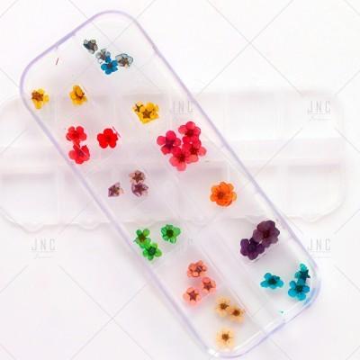 Flores Secas para Nail Art | Ref.862099