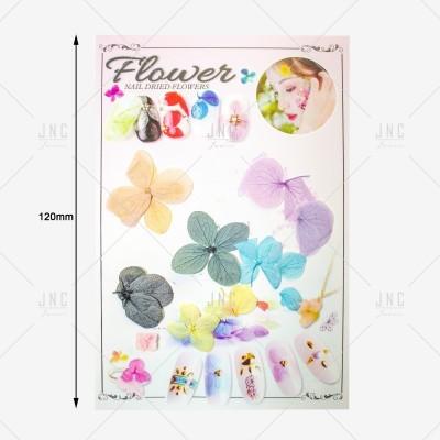 Flores Secas para Nail Art | Ref.861921