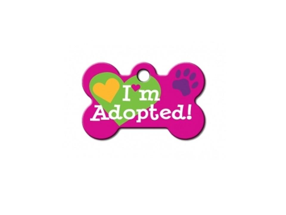 "Osso ""I'm Adopted!"" Rosa"