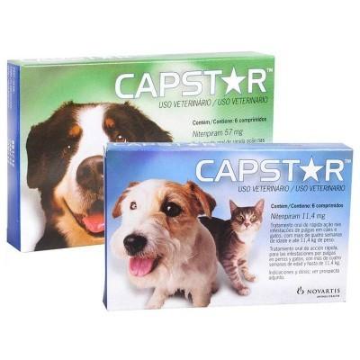 CapStar Comprimidos Anti-Pulgas
